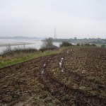Farm Land On The Banks Of The River Severn Gloucestershire