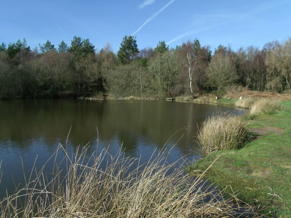 06-fairplay-pond