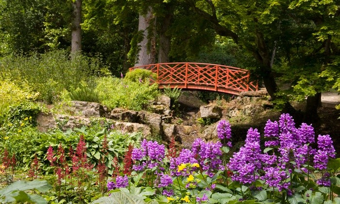 Batsford-Arboretum.jpg
