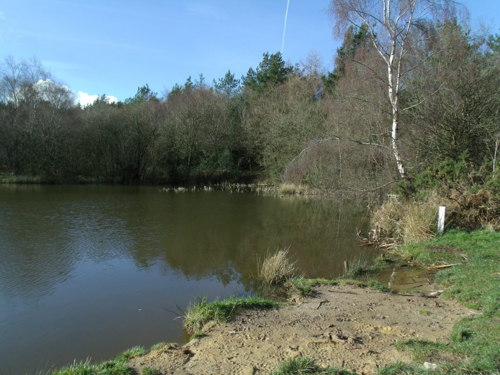 Fairplay Pond Fishing Pontoons